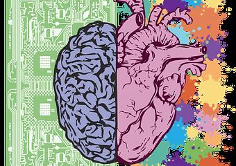 cerebro y corazón juntos