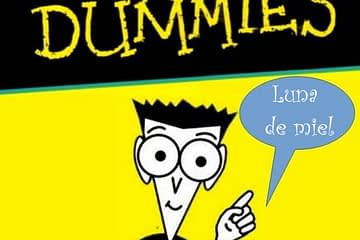 diabes for dummies luna de miel